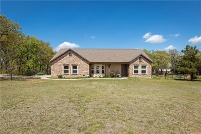 490 Eagles Way, Springtown, TX 76082 - #: 14016670