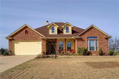 809 Dove Trail, Springtown, TX 76082 - #: 14018587