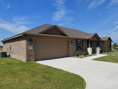 7223 Veal Station Road, Weatherford, TX 76085 - #: 14021822