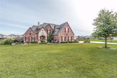 11008 Brook Green Lane, Haslet, TX 76052 - #: 14023127