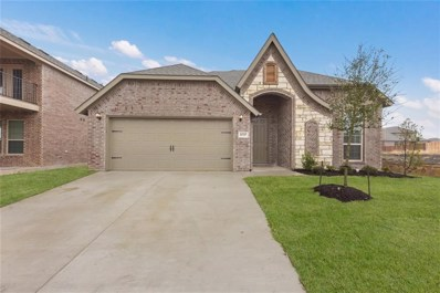 11717 Buckthorn Drive, Fort Worth, TX 76108 - MLS#: 14025014
