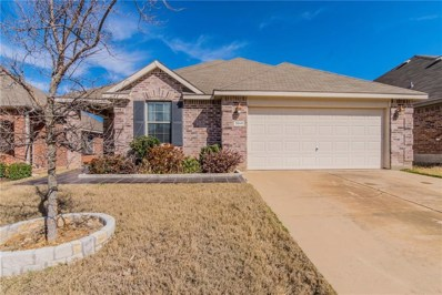 3941 Cloud Cover Road, Fort Worth, TX 76262 - #: 14029033