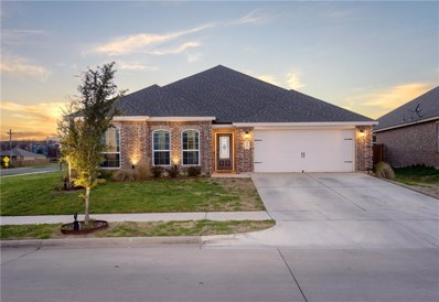 805 Oak Valley, Denton, TX 76209 - #: 14035589