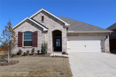 4028 Rosin Street, Aubrey, TX 76227 - #: 14038018