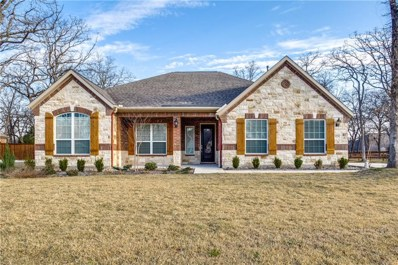 123 Spanish Oak Road, Krugerville, TX 76227 - #: 14045067