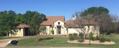 136 Birdie Drive, Lipan, TX 76462 - MLS#: 14045338