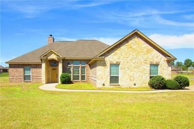 101 Eagles Crest Lane, Weatherford, TX 76087 - #: 14046582