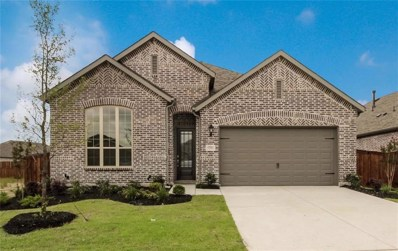 1704 Canter Court, Aubrey, TX 76227 - #: 14048010