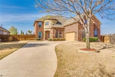 12877 Outlook Avenue, Fort Worth, TX 76244 - #: 14051543