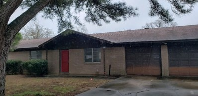 202 Lone Star Street, Joshua, TX 76058 - #: 14054277