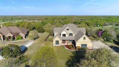 185 Horizon Circle, Azle, TX 76020 - #: 14057914