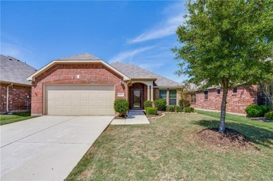 11817 Cape Cod Springs Drive, Frisco, TX 75036 - #: 14059301