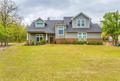 623 S Sugartree Drive, Lipan, TX 76462 - MLS#: 14059890