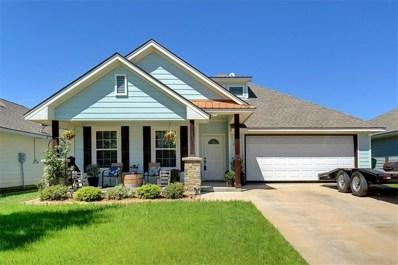 245 Firefly Drive, Springtown, TX 76082 - #: 14071413