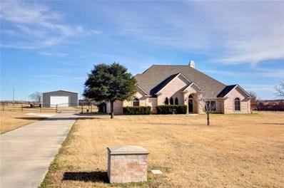 120 S Savanna Drive S, Rhome, TX 76078 - #: 14074673