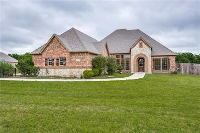 5651 Lucca Drive, Fort Worth, TX 76140 - #: 14083534