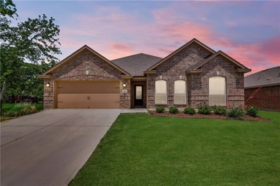 2517 Summer Trail Drive, Denton, TX 76209 - #: 14084301