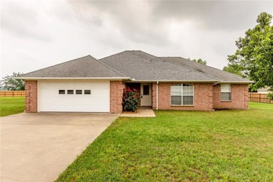 706 David Lane, Collinsville, TX 76233 - #: 14097451