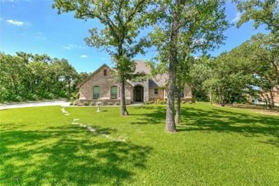 144 Post Oak Way, Brock, TX 76087 - #: 14101532