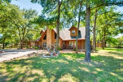 4101 County Road 1022, Cleburne, TX 76033 - #: 14102307