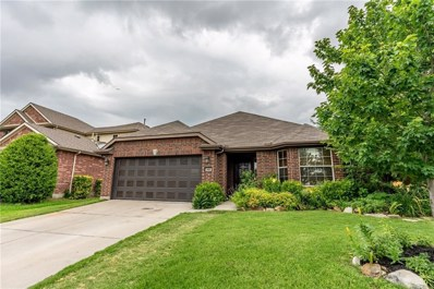 400 Meandering Trail, Little Elm, TX 75068 - #: 14103169