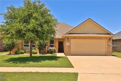 4810 Spring Creek Road, Abilene, TX 79602 - #: 14105583