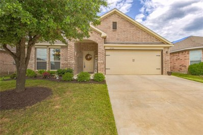 10709 Emerald Park Lane, Fort Worth, TX 76052 - #: 14115289