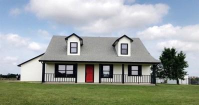 6360 Miller Road, Krum, TX 76249 - #: 14124045