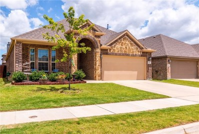 841 Lake Woodland Drive, Little Elm, TX 75068 - #: 14143624