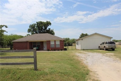 336 County Road 4841, Haslet, TX 76052 - #: 14151247