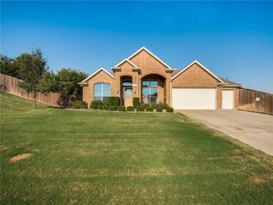 14101 Ridgetop Road, Fort Worth, TX 76262 - #: 14178310