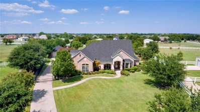 1836 Willow Springs Court, Haslet, TX 76052 - #: 14180380