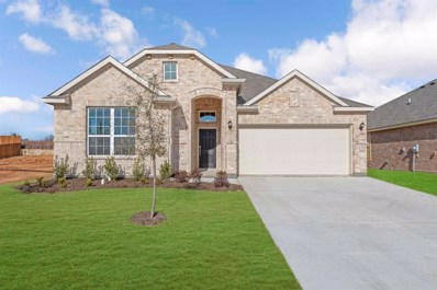 1417 Eagle Nest Drive, Pelican Bay, TX 76020 - #: 14192383