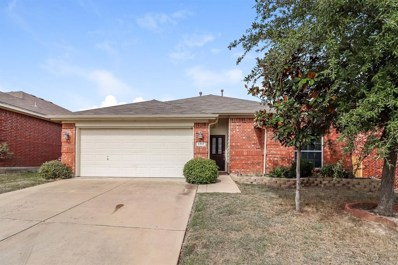 5817 Barrier Reef Drive, Fort Worth, TX 76179 - #: 14208311