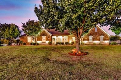 1312 Prairie Point Drive, Rhome, TX 76078 - #: 14211598