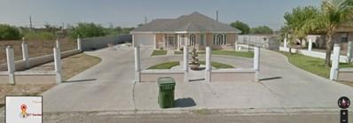 509 Gardenia Street, Sullivan City, TX 78595 - #: 217072
