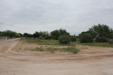 310 Foshee Street, Palmview, TX 78572 - #: 219913