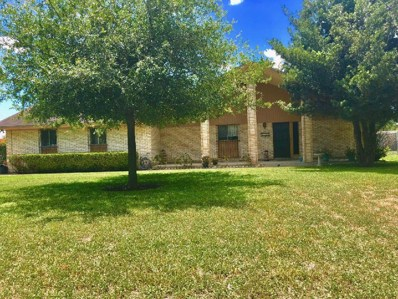 5309 N Taylor Road, Mission, TX 78572 - #: 221200