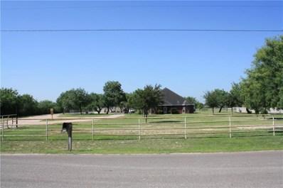 2801 Leonor Street, Mission, TX 78572 - #: 301400