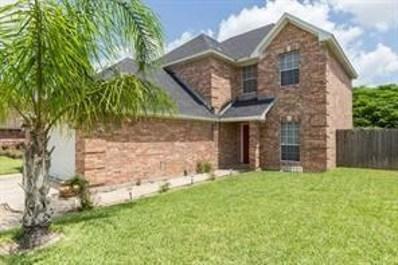 4520 Ivy Avenue, McAllen, TX 78501 - #: 304220