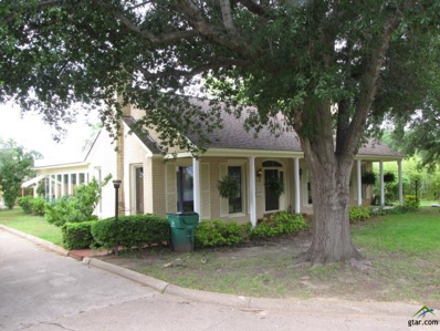 319 N Van Buren, Henderson, TX 75652 - #: 10044435