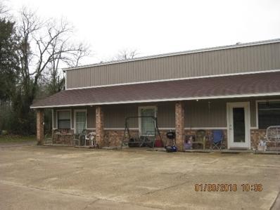 175 Spur 3007, Mt Vernon, TX 75457 - #: 10063625