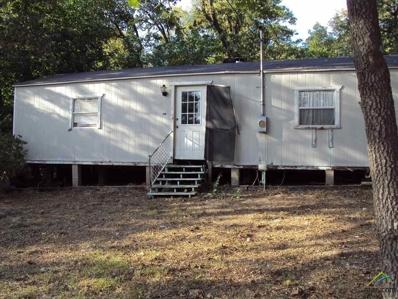 151 Sweetgum Trail, Murchison, TX 75778 - #: 10087593