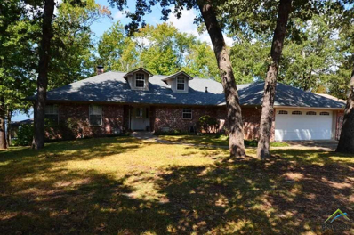 407 Sherwood, Murchison, TX 75778 - #: 10088055