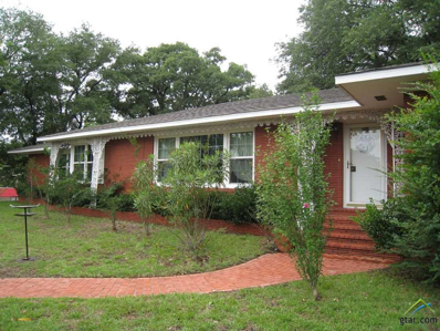 401 E Pine Street, Frankston, TX 75763 - #: 10090741