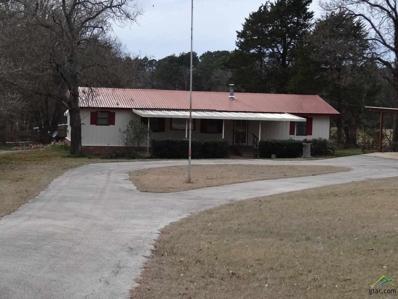 9180 E Fm 852, Winnsboro, TX 75494 - #: 10091371