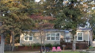 146 Mimosa, Murchison, TX 75778 - #: 10092011