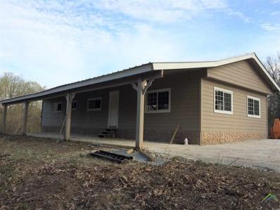 Cr 3070, Mt Pleasant, TX 75455 - #: 10092357