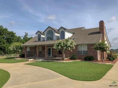 128 W Oaks, Yantis, TX 75497 - #: 10092358