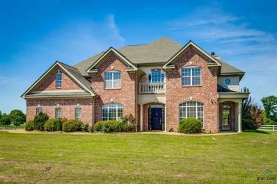 1015 High Meadow Drive, Mt Vernon, TX 75457 - #: 10093110